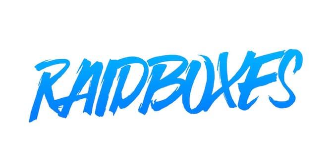 Make-A-Wish-Deutschland-Premium-Partner-Logo-Raidboxes